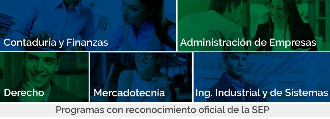 licenciatura en línea